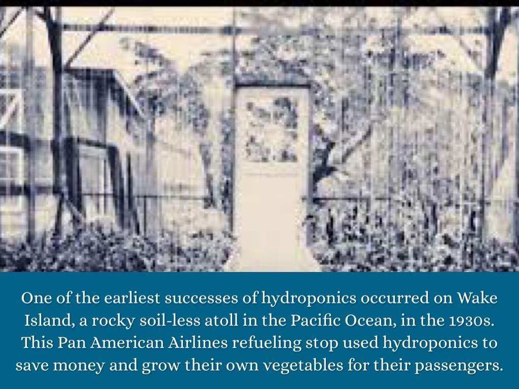 Hệ thống thủy canh thành công đầu tiên thành công được thực hiện trên đảo Wake