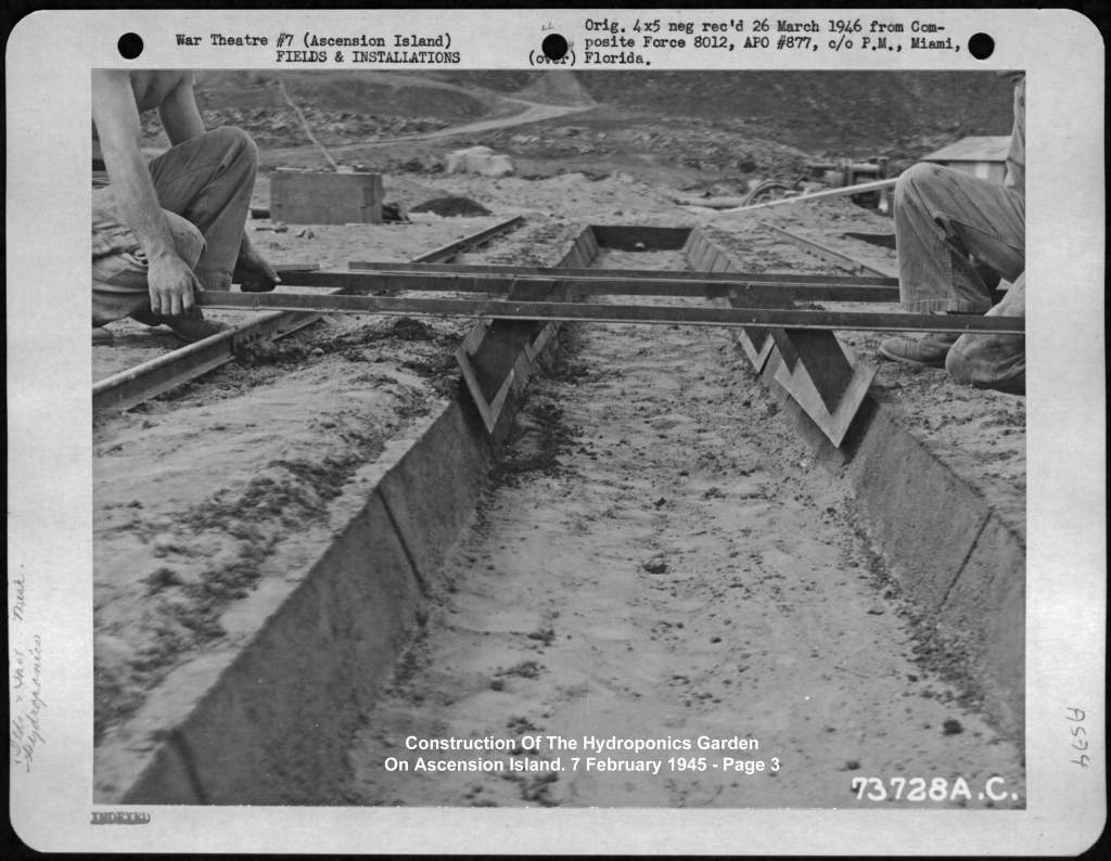 Hệ thống thủy canh được sử dụng trong chiến tranh thế giới thứ hai