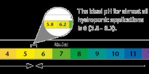 Tầm quan trọng của độ pH trong dung dịch thủy canh